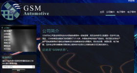 GSM Automotive - Chinese